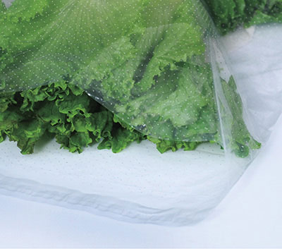 "12"" x 16"" Low Density Microperforated Resealable Bags - 24 Holes/PSI (1.5 mil)"