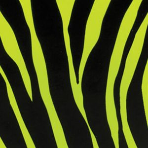 """Special Purchase Counter Rolls - Lime Zebra 24""""x417' Gift Wrap Counter Roll (1 roll)"""