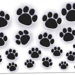 "All Occasion Theme Gift Cards - Paw Prints Theme Gift Cards 3 -3/4x2 -3/4"" (30 Packs; 6 Cards Per Pack)"