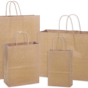 100% Recycled Brown Paper Bags - 100% Recycled 125 Bag Assortment 25 Rose, 50 Cub, 25 Vogue, 25 Queen (125 bags)
