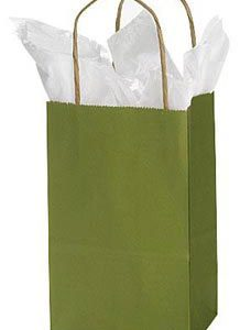 Small Rain Forest Green Paper Shopper (25 Bags/Case) - STOR-92771