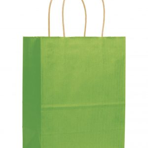 "Apple Green Varnish Stripe Shoppers, 8 1/4x4 3/4x10 1/2"" (250 Bags) - BOWS-15-080410-55"